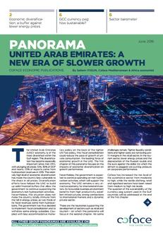 United Arab Emirates : A New Era of Slower Growth