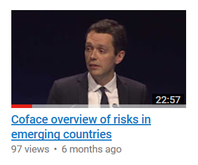 Coface Overview of Risks in Emerging Countries - by Julien Marcilly
