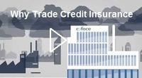 Why Trade Credit Insurance